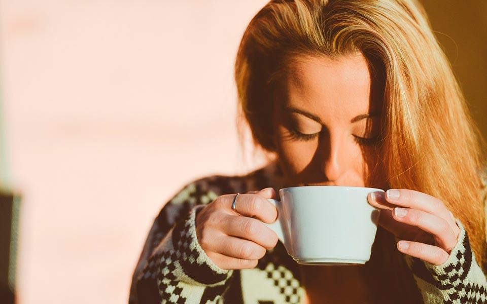 Curso de cata de café